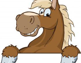 paardenpoep