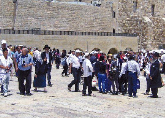 Rondreis Israël